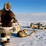 Что едят Эскимосы ?