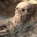 Интересные факты про археологов