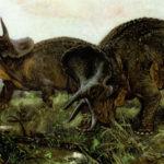 Интересные факты о Трицератопсе