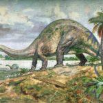 Интересные факты о Апатозавре (бронтозавр)