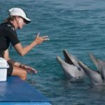 Как разговаривают дельфины ?