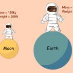 Каковы сходства между массой и весом ?