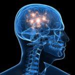 Как долго мозг выживает без кислорода ?