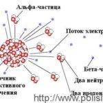 Из чего состоит альфа-частица ?