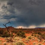 Каково ежегодное количество осадков в пустыне ?
