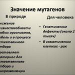 Каковы три примера мутагенов ?