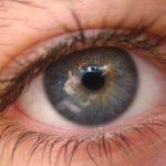 Насколько редки серые глаза ?