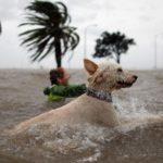 Почему образуются ураганы ?