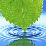Полезная информация о воде