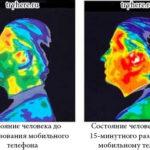 Каково влияние радиоволн на организм человека ?