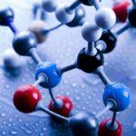 Каковы основы биохимии ?