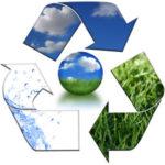 Откуда берется биомасса ?