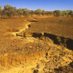 Как можно остановить опустынивание ?