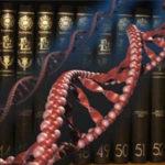 Как ДНК хранит информацию ?