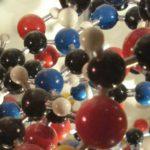 Какова основная функция нуклеиновых кислот ?