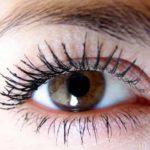 Сколько ресниц у человека на одном глазу ?