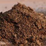 Что такое органическое вещество ?