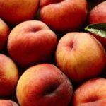 Какие страны выращивают персик?