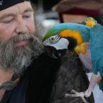 Почему спутниками пиратов чаще всего были попугаи ?