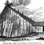 Каковы некоторые факты об индейцах Майду?