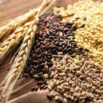 Что крестьяне ели в средневековые времена?