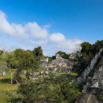 Каковы некоторые интересные факты о храмах майя?