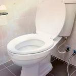 Почему Джон Харрингтон изобрел туалет?