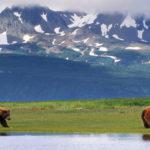 Когда Аляска была куплена?